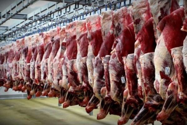قیمت گوشت قرمز کاهش یافت